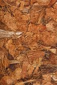 stock photo of coir  - Coconut Coir Husk Fiber Chips Surface border close up background - JPG