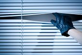 stock photo of snoopy  - The hand of a thief wearing a leather glove peeking through a window with closed venetian blinds - JPG