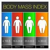 picture of body fat  - Body Mass Index graphic Icons - JPG
