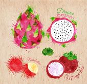 Постер, плакат: Exotic fruit watercolor dragon fruit rambutan mangosteen in kraft