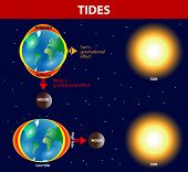 image of tide  - Tides depend where the sun and moon are relative to the Earth - JPG