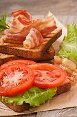 foto of baps  - hot big sandwich, toast and bacon with tomato, parsley, lettuce