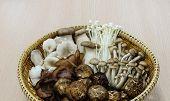 stock photo of edible mushrooms  - Oriental mixed mushroom - JPG