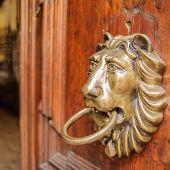 picture of lions-head  - Knocker lion - JPG