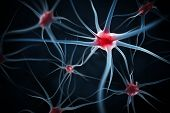 stock photo of nerve cell  - Neurons abstract background - JPG