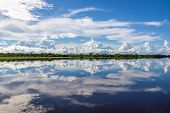 stock photo of rainforest  - Sky reflected in water on a lake in the Amazon rainforest in Peru - JPG