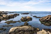 picture of mendocino  - The ocean view from a rocky beach in Fort Bragg - JPG