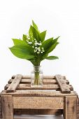 stock photo of wooden crate  - Lilies of the valley in a wooden crate - JPG