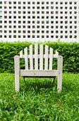 stock photo of lawn chair  - Chairs on the lawn in the garden - JPG