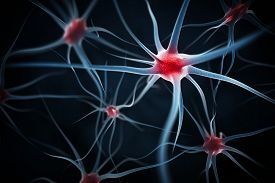 image of neuron  - Neurons abstract background - JPG