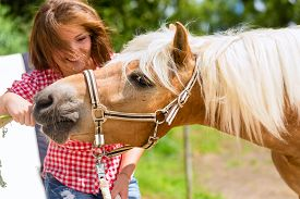 picture of feeding horse  - Woman feeding horse on pony farm - JPG
