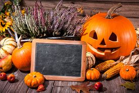 image of halloween  - Halloween still life with pumpkins and space for your Halloween holiday text - JPG
