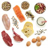 Food sources of protein, isolated, top view.  Includes meat, fish, dairy, beans, nuts and seeds. poster