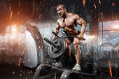 Athlete Muscular Bodybuilder In The Gym Training Biceps With Bar poster
