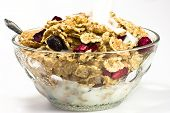 stock photo of cereal bowl  - Cereals - JPG