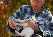Elderly Man With Cat poster