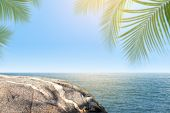 Blurred Coconut Tree Leaf And Stone Beach At Coastline, Rocks Front The Beach Stone Sea Background O poster