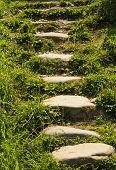 Stone Walkway In The Garden Meditative Stone Walkway. Garden Architecture, poster