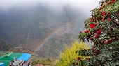 Nepalese Landscapeafter Rain. Mountains, Village, Rainbow And Rhododendrons poster