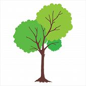 Tree With Green Leaves. Tree Icon Isolated On White Background. Tree Icon Simple Sign. Tree Icon Tre poster