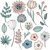 Flower Graphic Design. Vector Set Of Floral Elements With Hand Drawn Flowers. Collection Set Of Dood poster