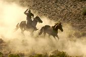 Roping In The Dust