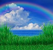 pic of sea-scape  - file of green grass field and sea sky white cloud rainbow - JPG
