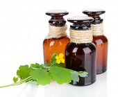 picture of celandine  - Blooming Celandine with medicine bottles isolated on white - JPG