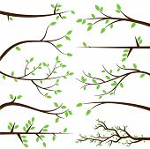 stock photo of spring-weather  - Vector Collection of Tree Branch Silhouettes with Leaves - JPG
