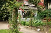 picture of climbing roses  - A gazebo in the garden with climbing roses - JPG