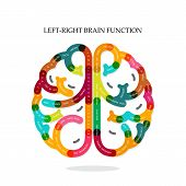 pic of left brain  - Creative  left and right brain function ideas on background - JPG
