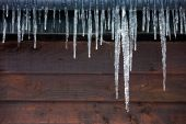 Icicles Hanging From A Drainpipe On A Wooden Panelled House poster