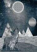 pic of wolf moon  - Drawing of a wolf howling to the moon in the desert - JPG
