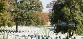 stock photo of virginia  - Arlington National Cemetery - JPG