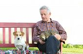 image of lap  - Senior man with dog and cat on his lap on bench - JPG