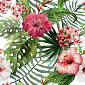 foto of jungle flowers  - trend illustration pink object brush purple exotic - JPG