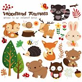 image of creatures  - an animal in the wood vector set - JPG