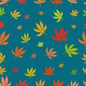 pic of marijuana leaf  - Seamless pattern of leaf marijuana different colors on a blue background - JPG