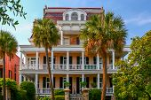 picture of mansion  - A stately Charleston, South Carolina mansion, with two palmetto trees in front.