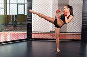 image of boxing ring  - High kick - JPG
