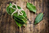 picture of bay leaf  - bundle of fresh bay leaves on a rustic wooden background - JPG
