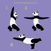 pic of virabhadrasana  - Illustration of yoga panda bear virabhadrasana  - JPG