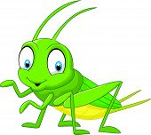 stock photo of cricket insect  - Vector illustration of Cartoon funny cricket isolated on white background - JPG