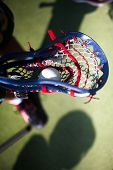 picture of lax  - high quality lacrosse theme - JPG
