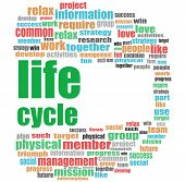 Life Cycle Words. Social Concept . Word Cloud Collage poster