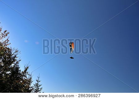 Paraglider Over The Blackforest