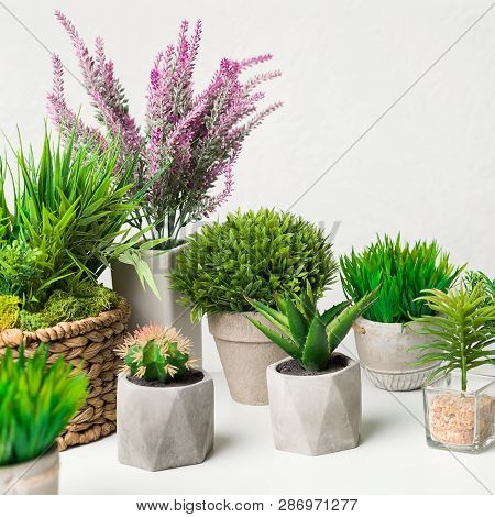 Artificial Houseplants In Different Pots