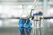 Green Leave Plant In Glass Test Tube And Flower In Vial With Blue Liquid Solution In Flask At Natura poster