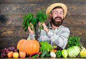 Organic Fertilizers Make Harvest Healthy And Rich. Farmer With Homegrown Vegetables Harvest. Organic poster