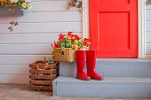Farmer Red Boots Placed On Wooden Stairs. Lifestyle Colorful Flowers, House Entrance With Red Door A poster